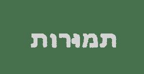tmotor logo